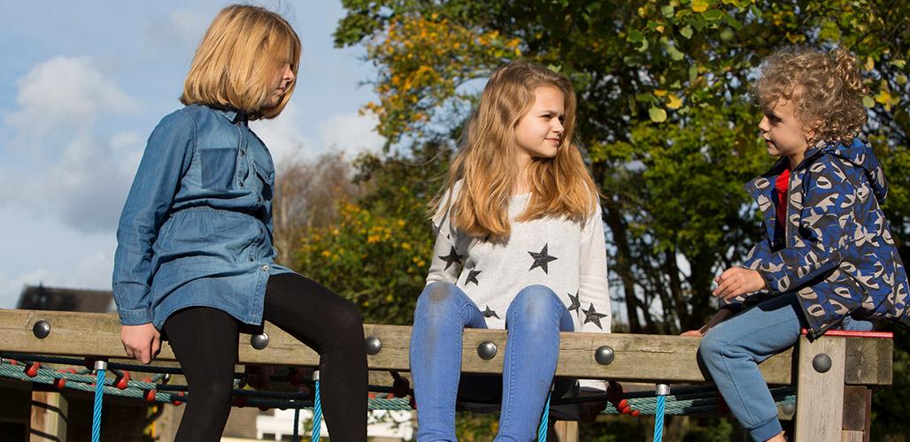 Kinderen op speeltoestel